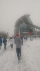 R snowy run