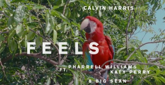 """Feels"" by Calvin Harris"